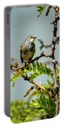 The  Yellow-rumped Warbler Portable Battery Charger