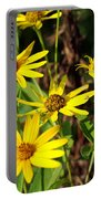 Thin-leaved Sunflower Portable Battery Charger