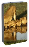 Thirsty Lions Portable Battery Charger