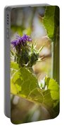 Thistle 2 Portable Battery Charger