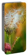 Thistle Seeds Portable Battery Charger