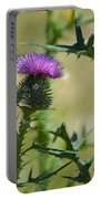 Thistle Spikes Portable Battery Charger