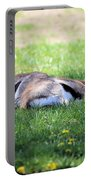 Thompson Gazelles Portable Battery Charger
