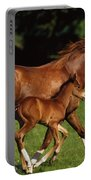Thoroughbred Chestnut Mare & Foal Portable Battery Charger