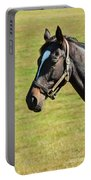 Thoroughbred Portrait Three Portable Battery Charger