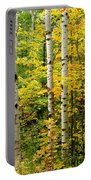 Three Birch Portable Battery Charger