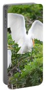 Three Birds Of A Feather Flock Together Portable Battery Charger
