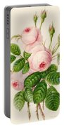 Three Centifolia Roses With Buds Portable Battery Charger