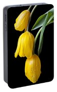 Three Drooping Tulips Portable Battery Charger