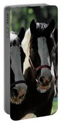 Three Gypsy Vanner Mares Portable Battery Charger