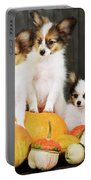 three puppy with pumpkin by Iuliia Malivanchuk Portable Battery Charger