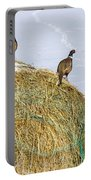 Three Roosters Portable Battery Charger