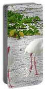 Three White Ibis Walking On The Beach Portable Battery Charger