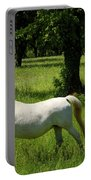 Three White Lipizzan Horses Grazing In A Field At The Lipica Stu Portable Battery Charger