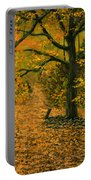 Through The Fallen Leaves Portable Battery Charger