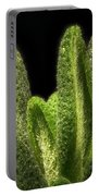 Thyme Leaves Portable Battery Charger