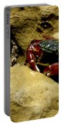 Tide Pool Crab 1 Portable Battery Charger