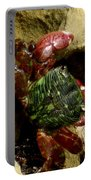 Tide Pool Crab 2 Portable Battery Charger