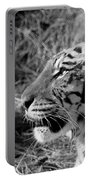 Tiger 2 Bw Portable Battery Charger