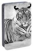 Tiger Cub At Rest Portable Battery Charger