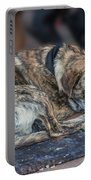 Tiger Dog And The Buskers Portable Battery Charger
