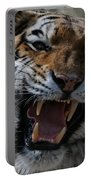 Tiger Faces 2 Portable Battery Charger