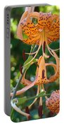 Tiger Lilies Art Prints Canvas Summer Tiger Lily Flowers Portable Battery Charger