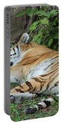 Tiger- Lincoln Park Zoo Portable Battery Charger