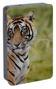 Tiger Look Portable Battery Charger
