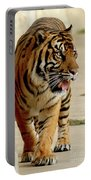 Tiger Pacing Portable Battery Charger