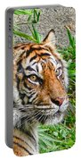 Tiger Portrait Portable Battery Charger