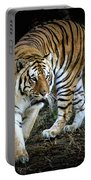 Tiger Stripes Memphis Zoo Portable Battery Charger