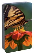 Tiger Swallowtail - 3 Portable Battery Charger