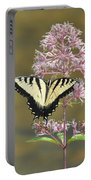 Tiger Swallowtail Butterfly On Common Milkweed 1 Portable Battery Charger