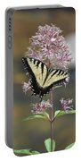 Tiger Swallowtail Butterfly On Common Milkweed 2 Portable Battery Charger