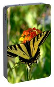 Tiger Tail Beauty Portable Battery Charger