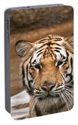 Tiger Wading Stream Portable Battery Charger