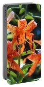 Tigers In The Sun Portable Battery Charger