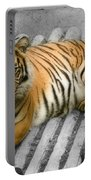 Tigers Look Portable Battery Charger