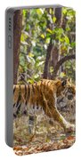 Tigress Walking Through Sal Forest In Pench Tiger Reserve  India Portable Battery Charger