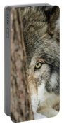 Timber Wolf Picture - Tw285 Portable Battery Charger