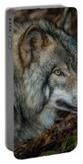 Timber Wolf Picture - Tw417 Portable Battery Charger