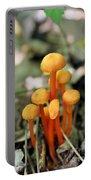 Tiny Orange Mushrooms Portable Battery Charger