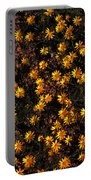 Tiny Yellow Flowrers On The Desert Floor Portable Battery Charger