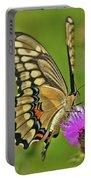 Titan On Wings... Portable Battery Charger by Nina Stavlund