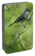 Titmouse In The Brush Portable Battery Charger