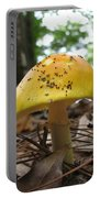 Toad Stool Portable Battery Charger