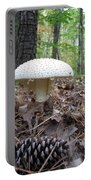 Toad Stool V Portable Battery Charger