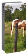 Tobiano And Bay Horses Portable Battery Charger