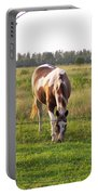 Tobiano Horse In Field Portable Battery Charger